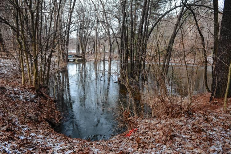 A Smelly Problem Near Silver Lake